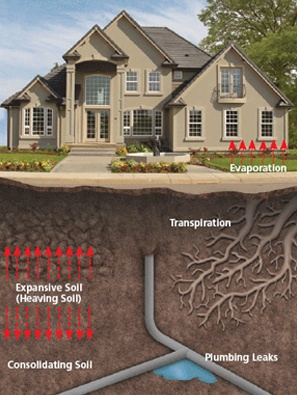 Be on the Lookout: Causes of Foundation Failure