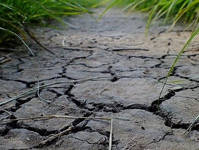 dry weather dry soil