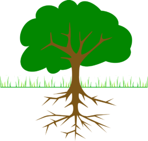 Green tree with brown roots illustration