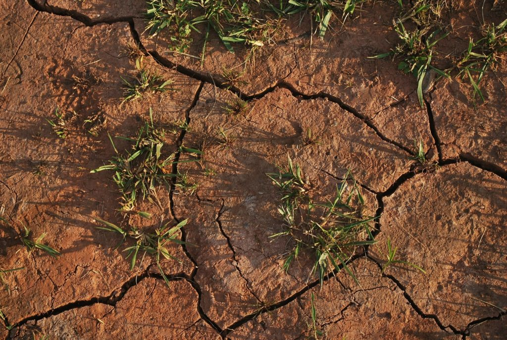 hot, dry weather causes soil to become dehydrated and crack