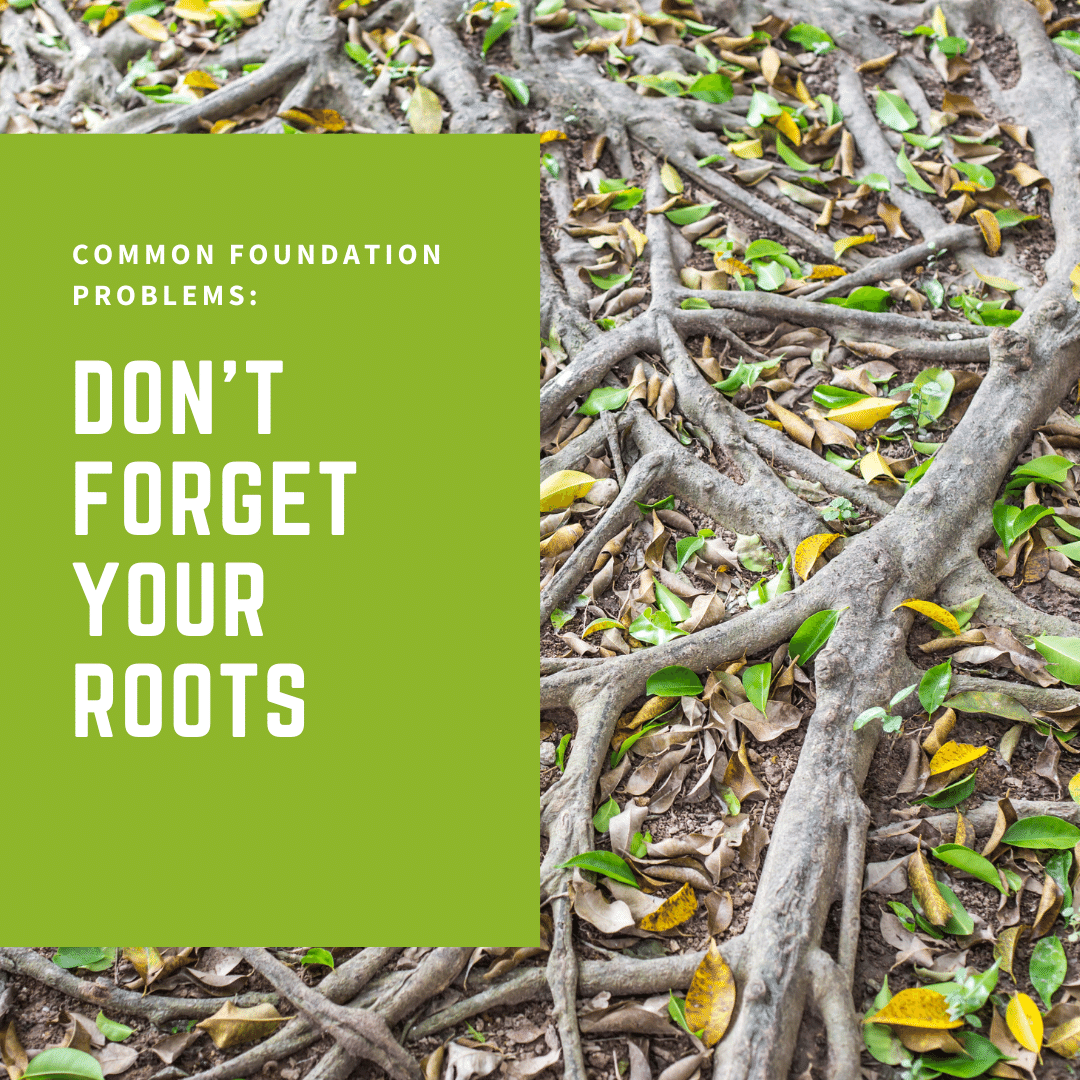 Common Foundation Problems: Don't Forget Your Roots