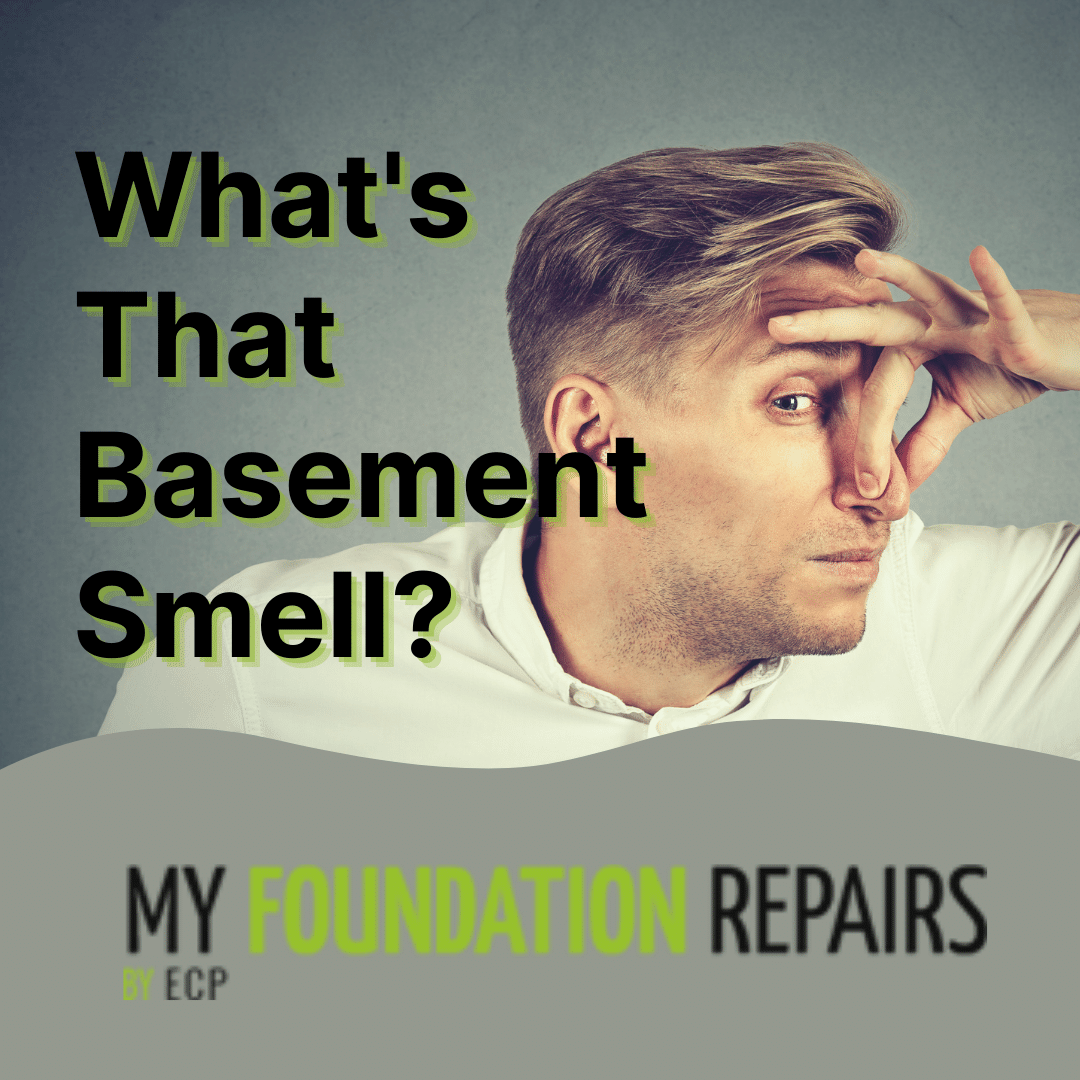 What is That Basement Smell?
